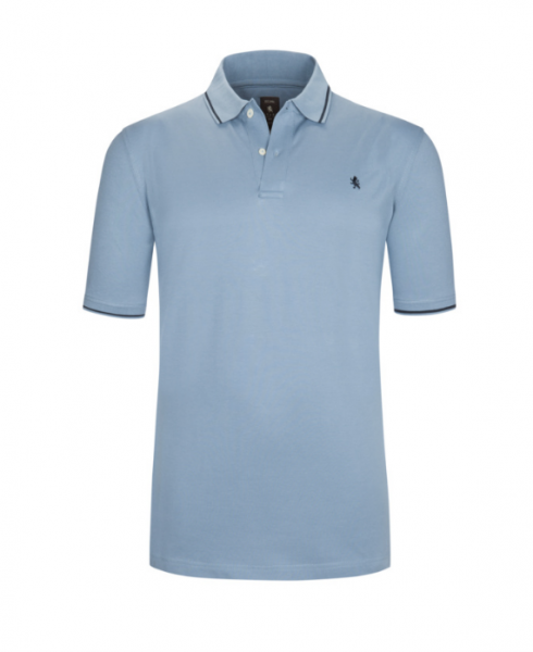Polo shirt with stripes on the collar